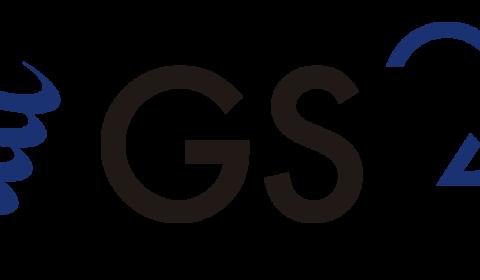 GSI DOTACIÓN INDUSTRIAL (LALÍN)